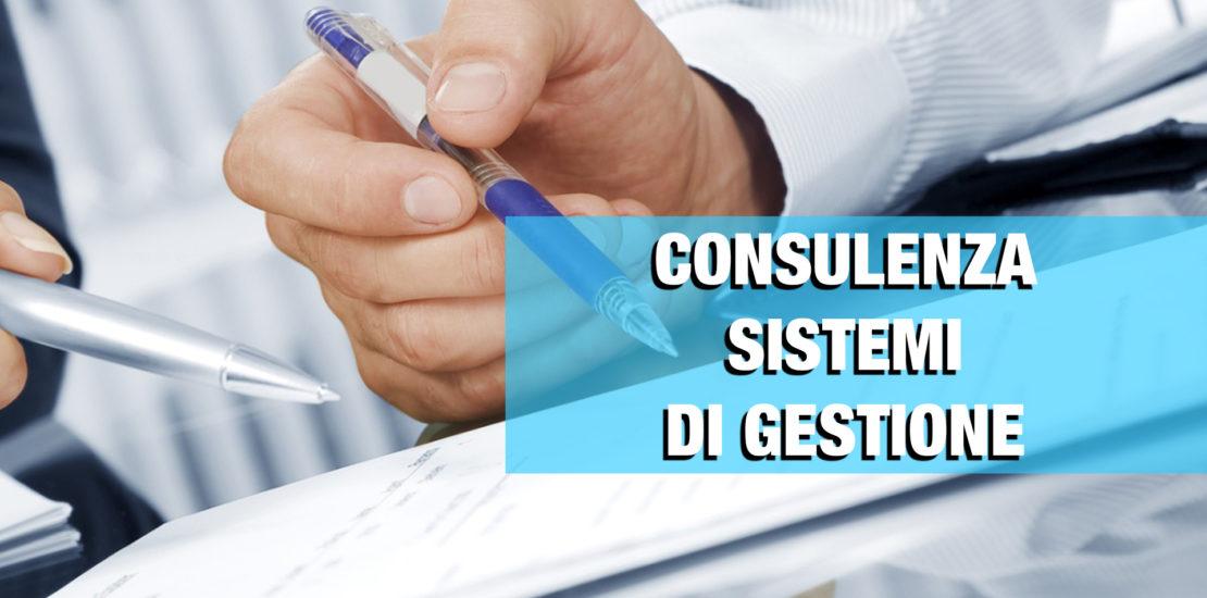 consulenza-gestione